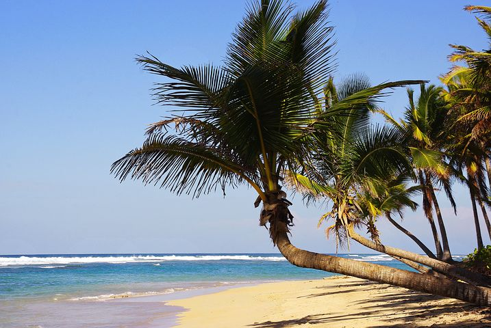 !!!LAST MINUTE!!! DOMINIKANSKA REPUBLIKA # 11 dni (povratna letalska karta + nastanitev) že za €576/os!